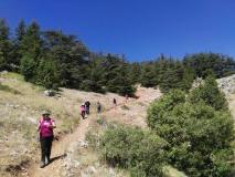 Arz Ain Zhalta Hike 28-07-2019