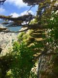 Camping Hike 22-06-2019