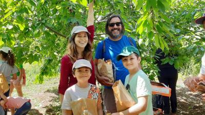 Cherry Picking 20-06-2020