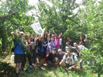 Cherry Picking Tan 21-06-2015