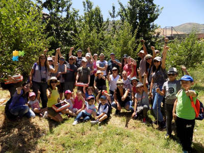 Cherry Picking Tannourine 26-06-2017